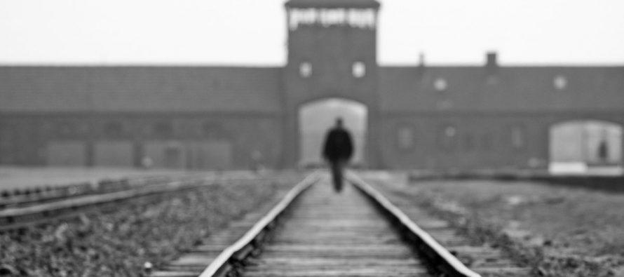 Commemorating 70th anniversary of the Auschwitz-Birkenau liberation