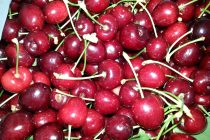 The Month of Cherries