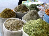 Imported seed cultivation blamed as medicinal plant exports hit 5-year low