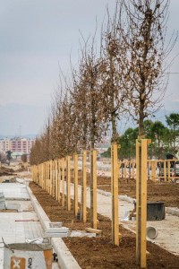Tirana's New Boulevard under construction, Photo: Municipality of Tirana