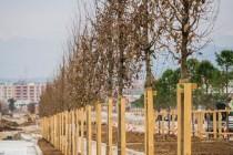 Dubai-based company plans to build $250 mln high-rise in Tirana