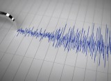 Swarm of earthquakes reminds residents of seismic risks