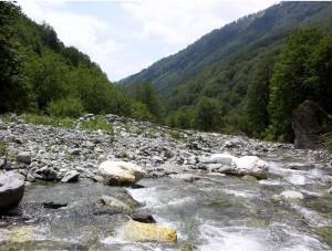 Gashi River. Photo: Lulezim Shuka