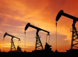 Three state-run oil fields put up for auction