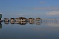 Kune-Vain Valley's natural habitat renewed under protection moratorium