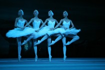 Palace of Congresses to host Swan Lake ballet for two nights