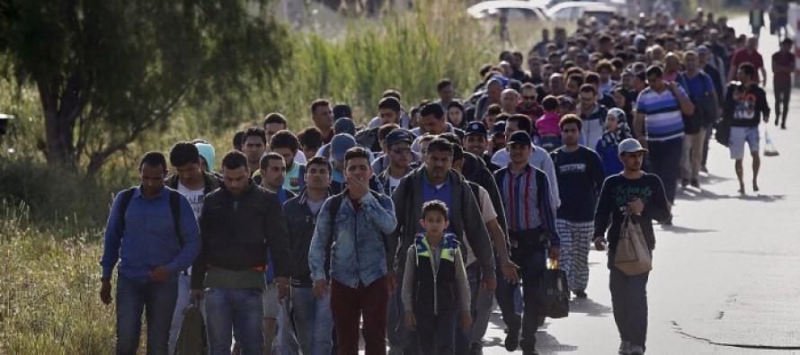 Editorial: Albania as EU's migrant camp: A price too high