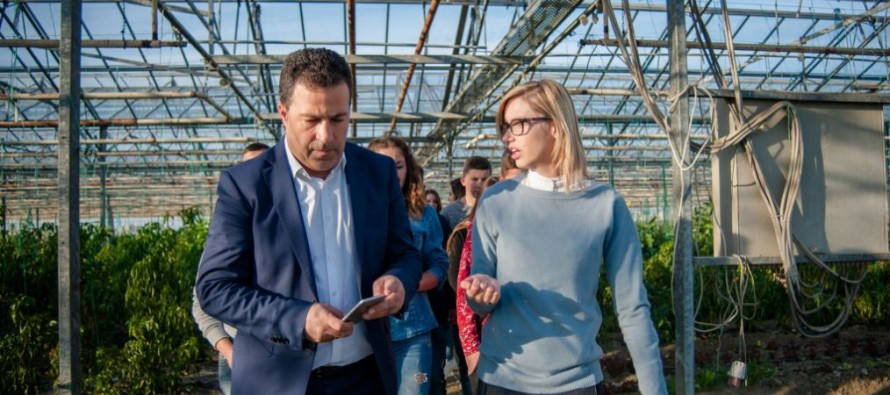 Unclear property titles hamper Albania's agricultural development, minister says