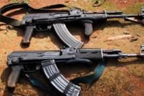 Albanian citizen killed by Greek police during anti-drug raid near Albanian-Greek border