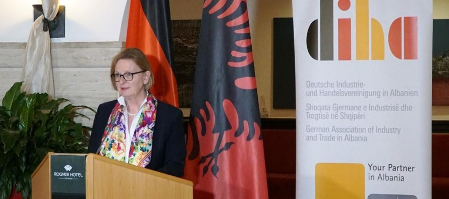 Guarantee fair business climate to attract investors, German ambassador says