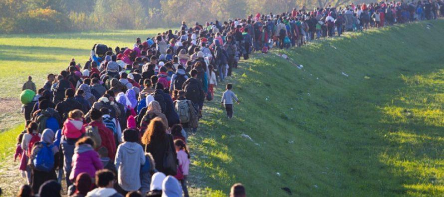 Eurostat releases 2018 asylum seekers data