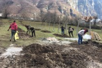 A mission to expand green areas in Albania