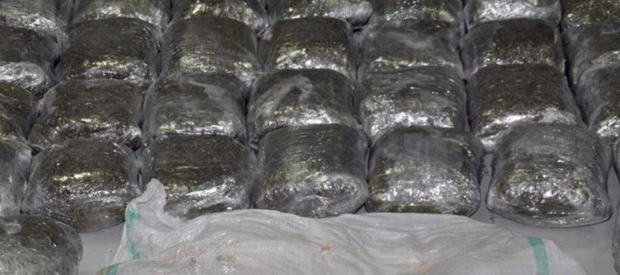 Montenegrin police arrests three for trafficking Albanian-origin cannabis