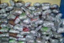 Greek police seizes 800kg of alleged Albanian cannabis near border