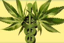 Cannabis to the rescue: the dark strange return of the legalization initiative