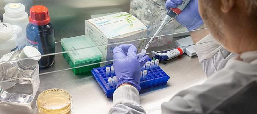 Russia's approval of COVID-19 vaccine sparks global concern